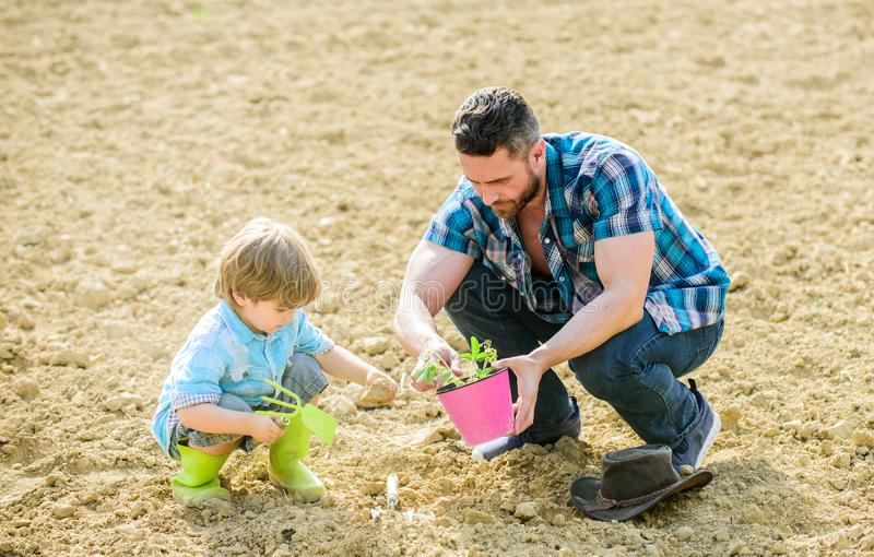 New life. soils and fertilizers. father and son planting flowers in ground. rich natural soil. Eco farm. earth day. Earth day. Family tree. small boy child royalty free stock photography