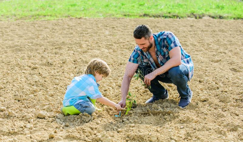 New life. soils fertilizers. rich natural soil. Eco farm. father and son planting flowers in ground. earth day. small. Boy child help father in farming. happy stock photography