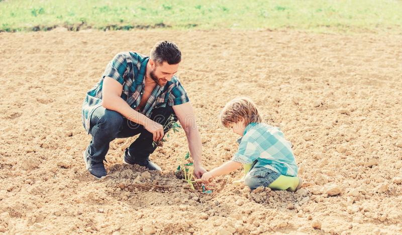 New life. soils fertilizers. rich natural soil. Eco farm. father and son planting flowers in ground. earth day. small stock images