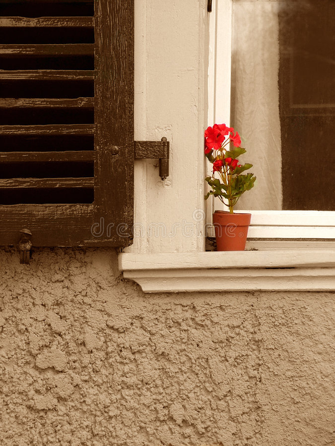 New Life to Old Sill stock photos