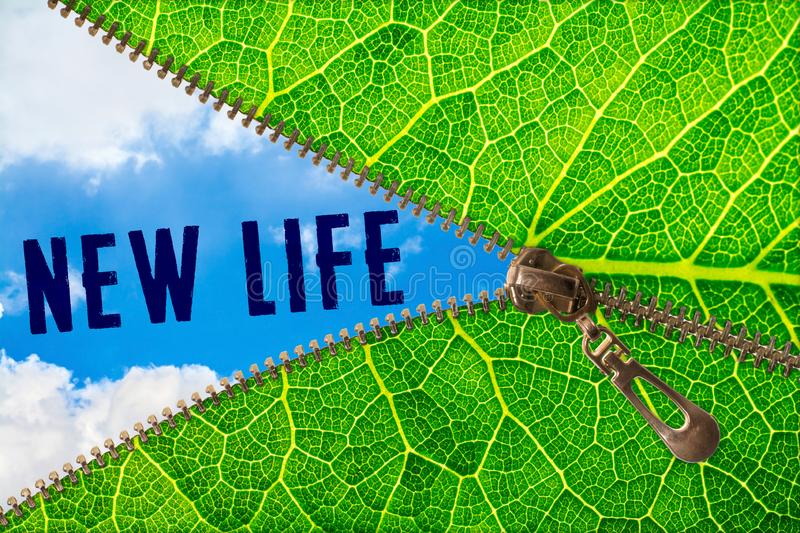 New life word under zipper leaf. Open zipper leaf and showing sky with new life word royalty free stock photography