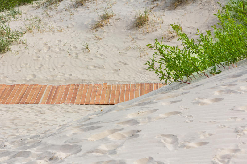 New light brown planks boardwalk in white sand dunes. stock photo