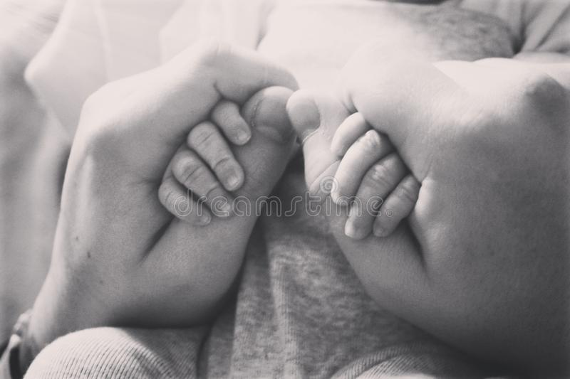 New love for life. Baby, newborn, hands stock images