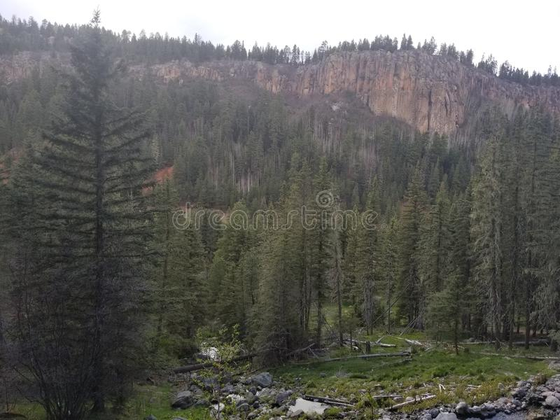 New Mexican Mountain royalty free stock photo