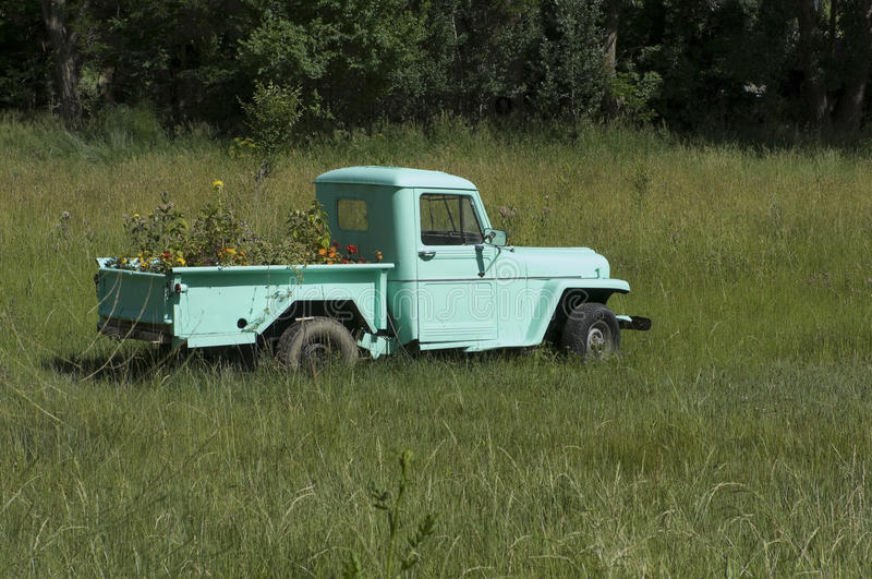 New Mexico Flower Pot. A brightly painted antique pick-up truck full of blooming summer flowers sits in an empty New Mexico pasture royalty free stock photography