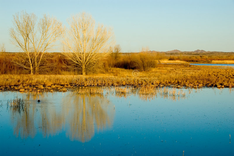 New Mexico Landscape royalty free stock photos