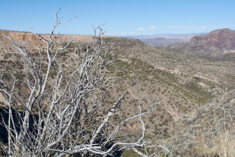 New Mexico Mesas From Overlook. View of New Mexico desert mesas from Overlook Park in White Rock, NM royalty free stock image