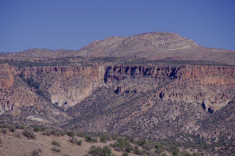 New mexico mountain overlook. Rare plants. desert stock photography