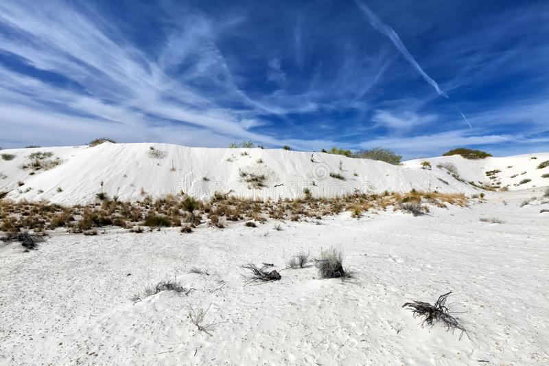 New Mexico - The white sands. A white desert of gypsium royalty free stock photography