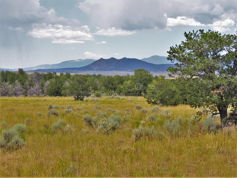 New Mexiko ` s Santa Fe National Forest lizenzfreie stockfotografie