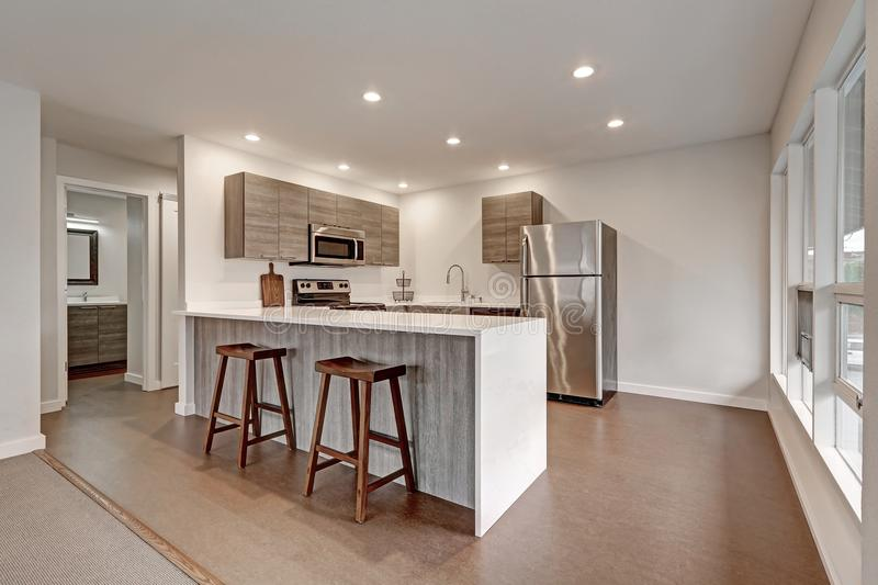 New modern apartment with grey kitchen. New modern apartment interior presents compact grey kitchen with new white quartz countertops, grey cabinets and royalty free stock photos
