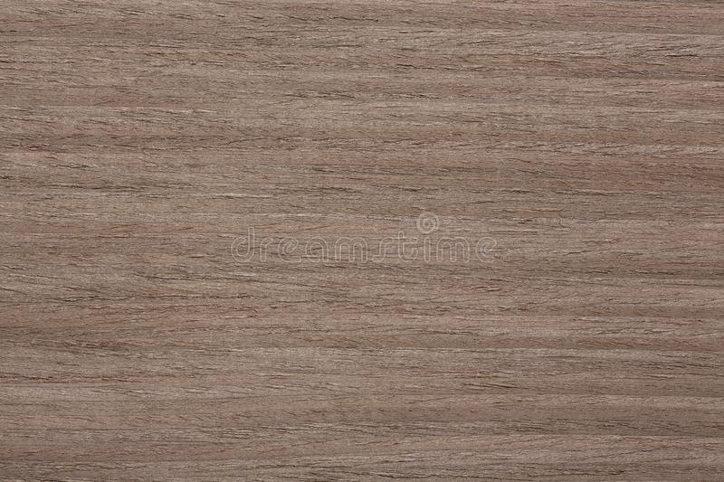 New nut veneer texture for your natural interior. royalty free stock image