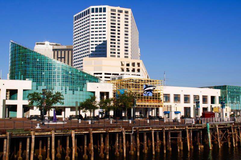 New Orleans - acquario dei Americas fotografia stock libera da diritti