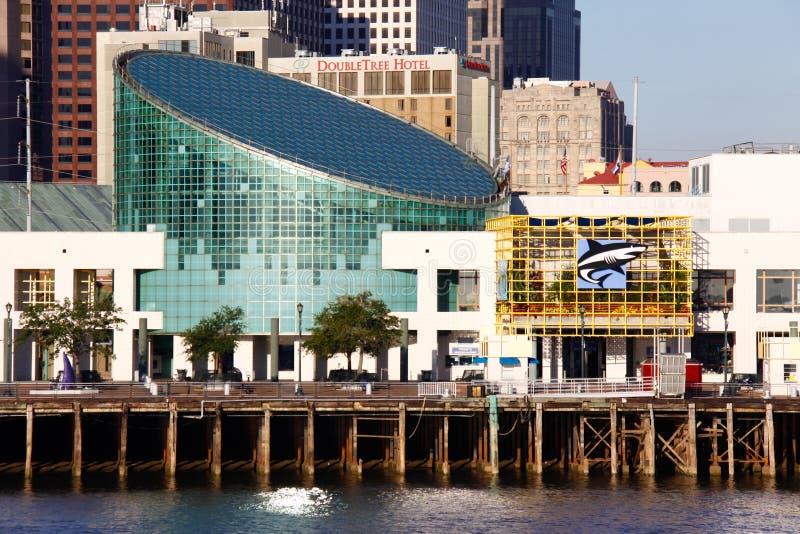 New Orleans - Aquarium des Amerikas lizenzfreie stockfotos