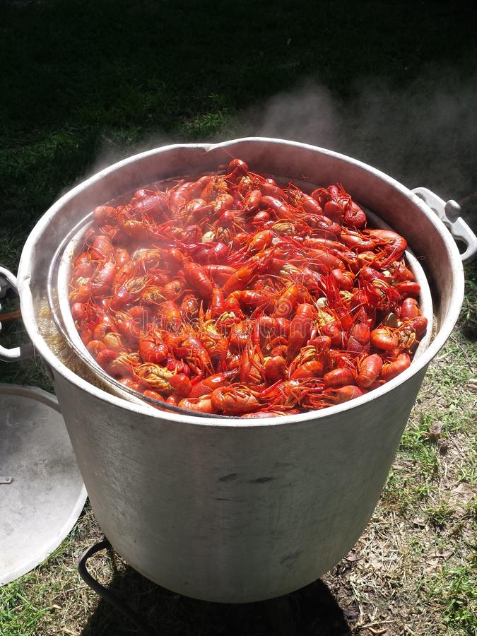 New Orleans Crawfish Boil. Authentic New Orleans Louisiana Bayou Crawfish Boil Cajun Spices Corn Potatoes Sausage stock image