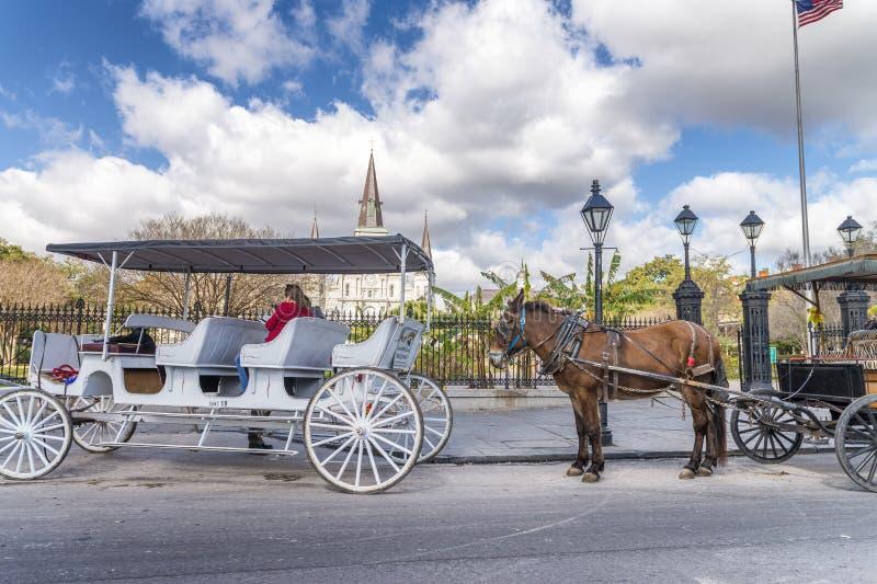 NEW ORLEANS - JANUAR 2016: Pferdewagen in Jackson Square Th lizenzfreies stockbild