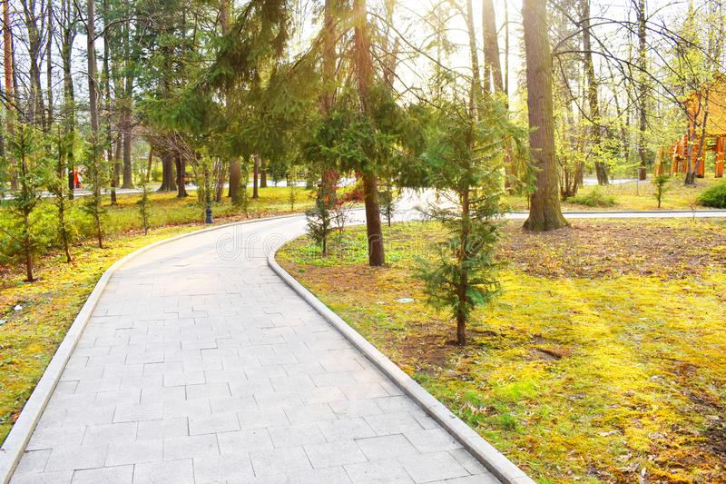 New pathway and beautiful trees track for running or walking and cycling relax in the park on green grass field in the city park stock image