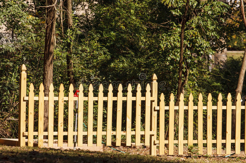 Download New Pine Fence by Trees stock photo. Image of border - 28288248