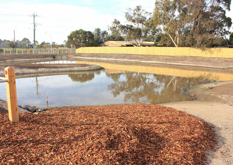 Download New Pond In Newly Developed Park Stock Photo - Image of landscaped, under: 31111646
