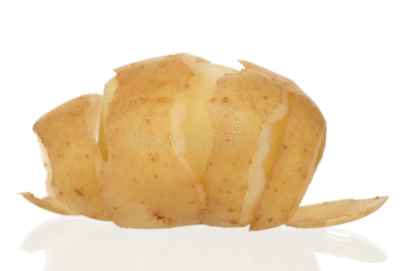 Download New potato stock photo. Image of agriculture, fresh, closeup - 26841628