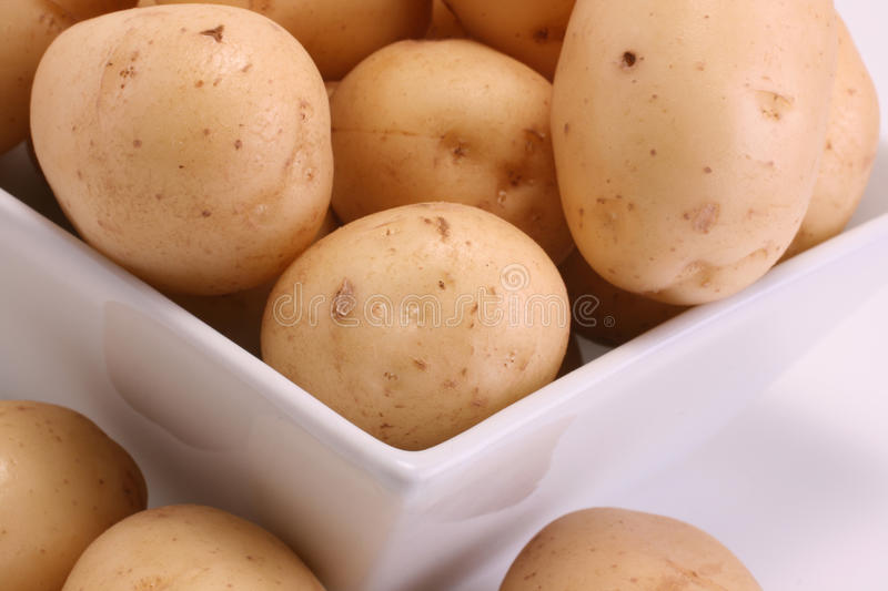 Download New Potatoes stock image. Image of produce, farm, square - 12966401