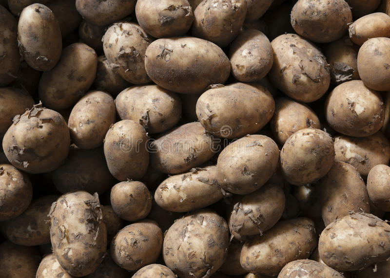 New potatoes. Stack of new potatoes in a market royalty free stock photos
