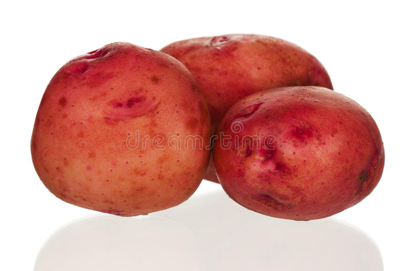 Download New potatoes stock image. Image of fresh, potato, carbohydrate - 26924895