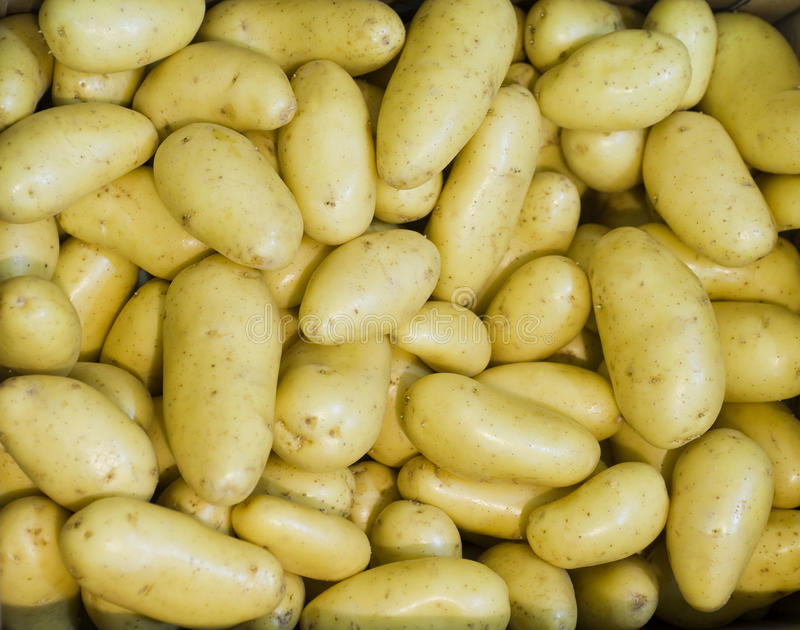 Download New potatoes close-up stock photo. Image of skin, market - 13170336