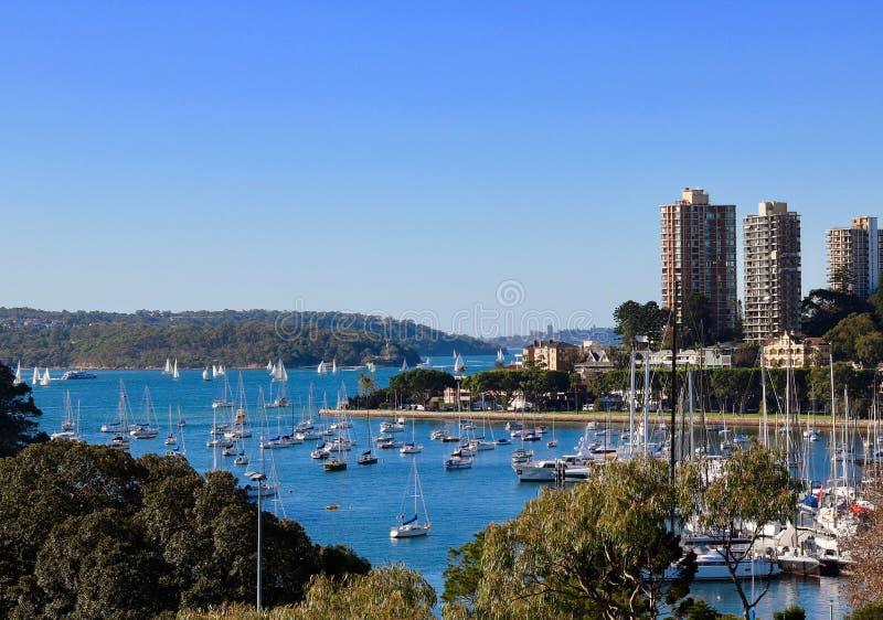 New South Wales - Rushcutters fj?rd Sydney p? en h?stdag med bl? himmel royaltyfri bild