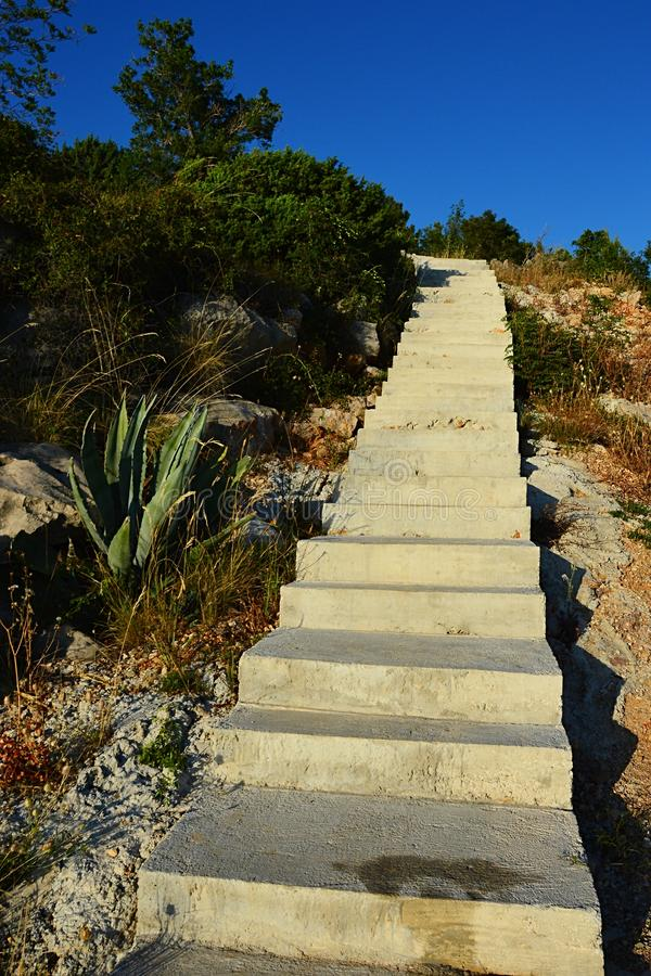 New steep concrete stairs leading upwards through shore vegetation in Croatia, Adriatic, afternoon sunshine. royalty free stock photos