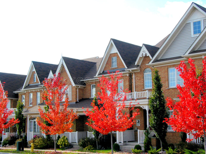 New Townhomes. Real estate: A row of new townhomes with bright red fall trees royalty free stock photos