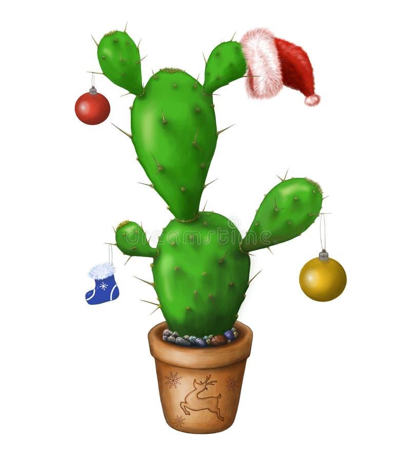 Christmas Cactus Clipart.Christmas Cactus Stock Illustrations 665 Christmas Cactus