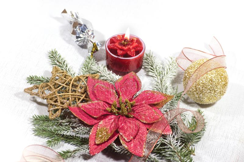 New Year, Christmas holiday card. Christmas flower poinsettia, Christmas tree branches with decoration. New Year`s photo. Christmas flower poinsettia. Green stock images