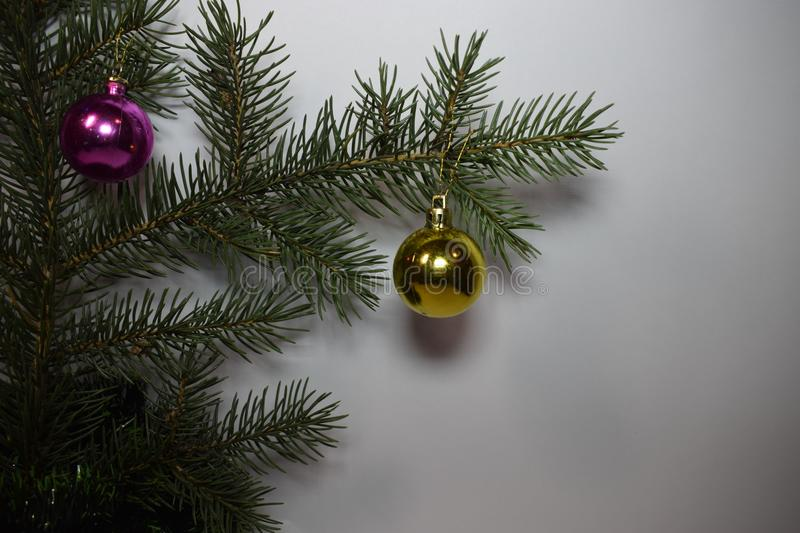 Happy new year and Christmas. New year fir tree green happy new year christmas, holiday winter december january happiness needles Christmas tree ball purple royalty free stock photography