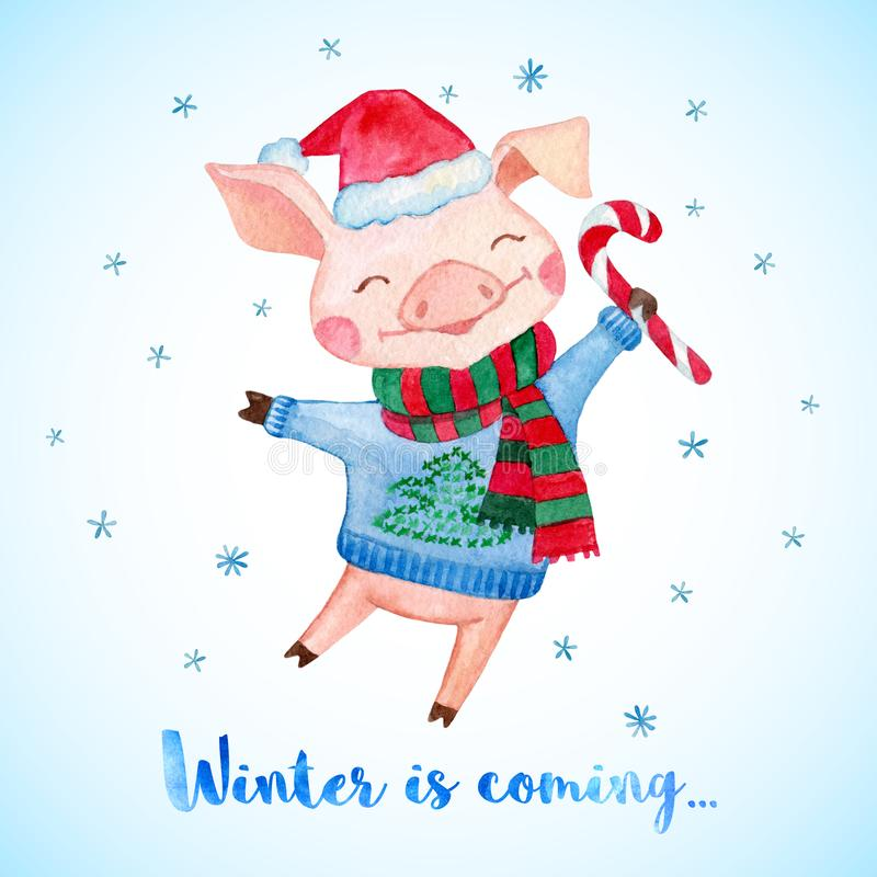 New Year greeting card with cute Pig in Santa`s hat, sweater and scarf. vector illustration