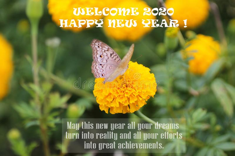 2020 quote - May this new year all your dreams turn into reality & all your efforts into great achievements. Happy New Year. royalty free stock image