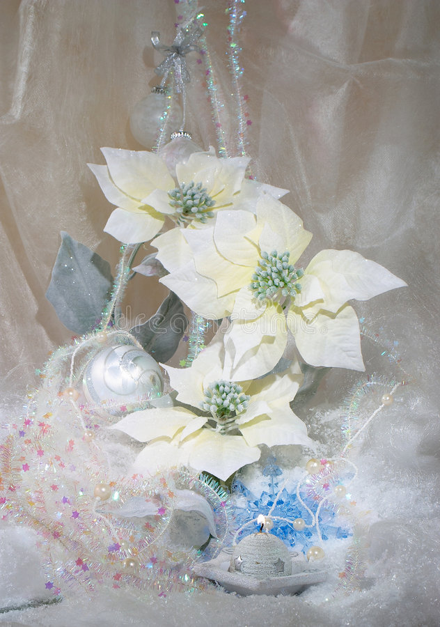 New Year's bouquet stock photos