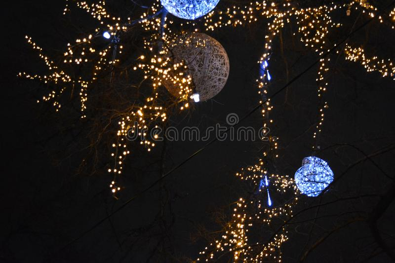 New Year`s, festive decoration of a winter tree is gold LED, yellow luminous diodes, light bulbs. royalty free stock photography