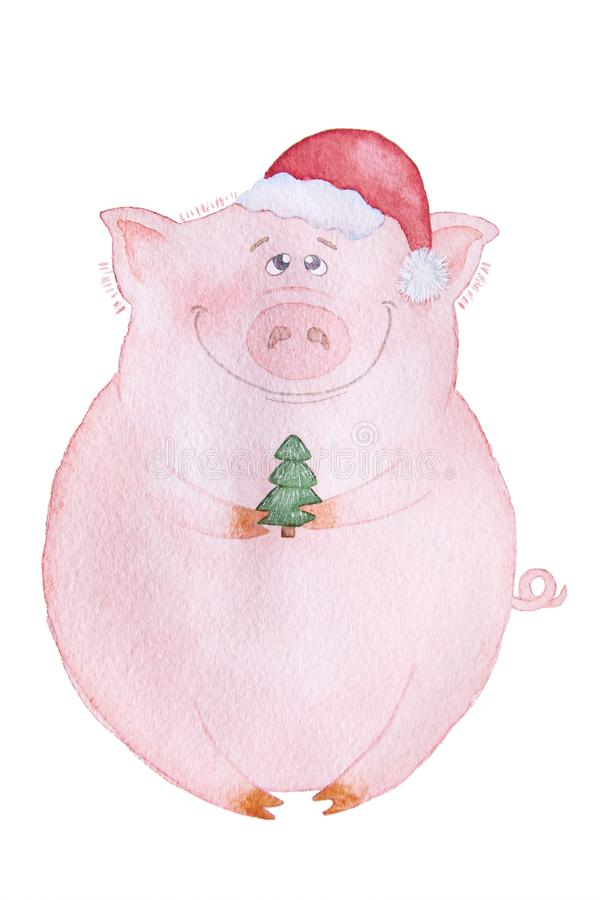 New Year`s pig royalty free stock photos
