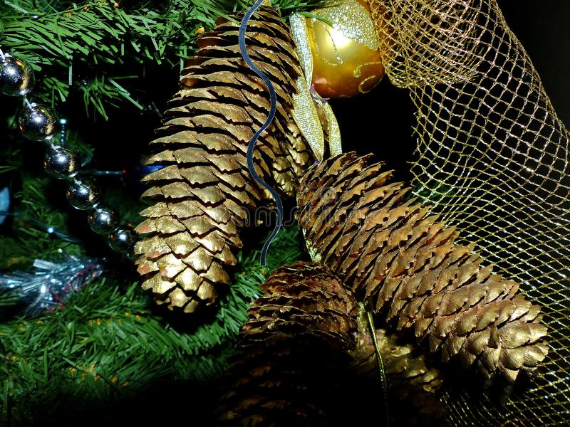 New Year`s toys on branches of a fur-tree. Gold pinecone. Celebratory background. New Year`s and Christmas. stock photo