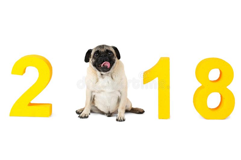 New Years Inscription 2018 The Dog Symbol Sits Instead Of The