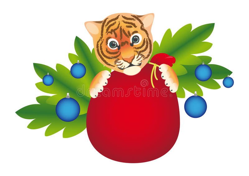 New year tiger royalty free stock images