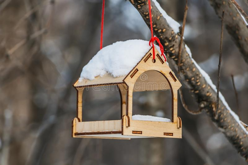 A new yellow bird and squirrel feeder house from plywood with white snow on the roof is hanging on a red rope on a brown tree in a. Park in autumn stock photography