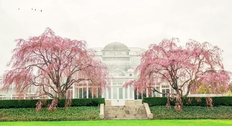 The New York Botanical Garden. Spring at the New York Botanical Garden in the Bronx, NY royalty free stock images