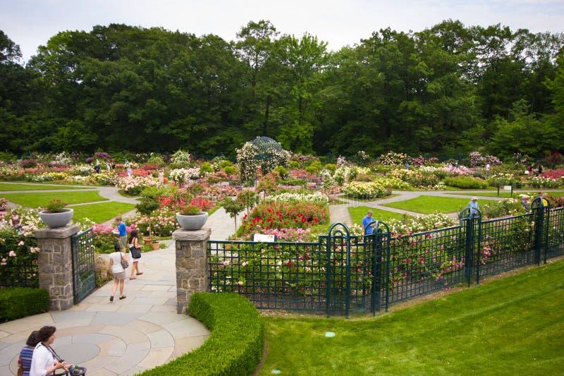 New York botanisk trädgård NYC royaltyfri fotografi