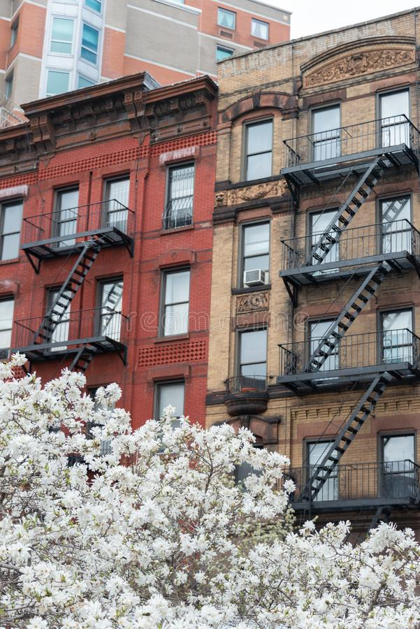 New York City Architecture in fall royalty free stock photography