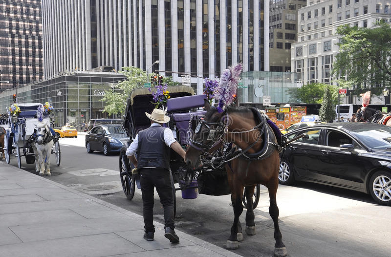 New York City,august 2nd:Carriage for sightseeing tour in Central Park from Manhattan in New York stock photography
