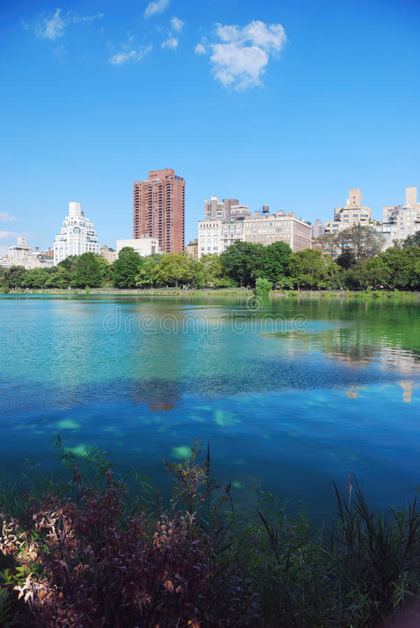 New York City Central Park fotografia stock libera da diritti