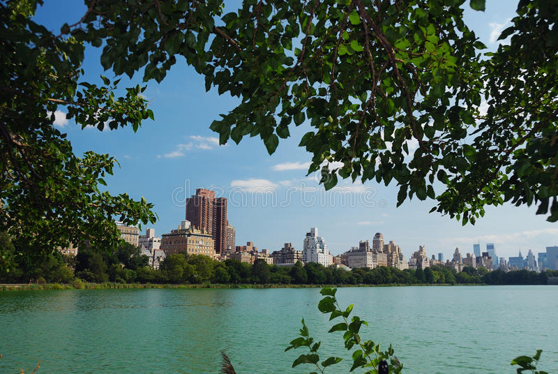 Download New York City Central Park stock image. Image of forest - 15646155