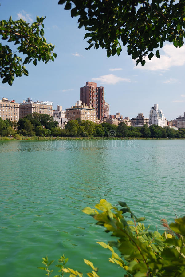 Download New York City Central Park stock photo. Image of landscape - 15646168